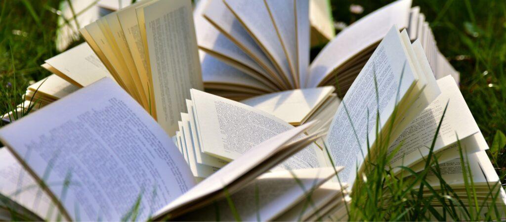Delit i najciekawsze książki niemieckojęzyczne